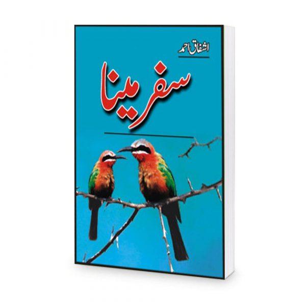 Safar e Meena Book by Ashfaq Ahmad